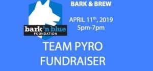 Team Pyro Fundraiser