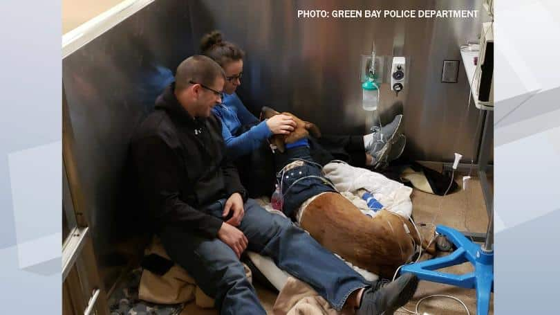K9 Pyro with handler sitting in hospital